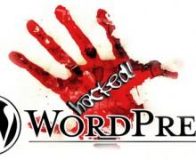 create WordPress Website or Blog for you